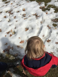 Some sparkly patches of snow crystals. two favorite moments: picking up icy cool crystals and listening to the sound of it in our hands, and visiting the pond to see if the ice has melted.