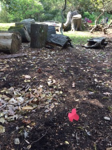 How far ahead did you let your kids venture on Sunday's fairy adventure trail?