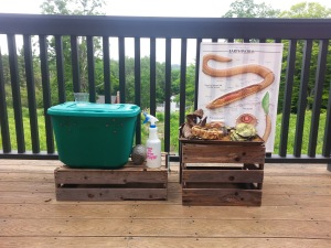 the green vermicomposting bin and observation station at the Audubon Farm and Food Expo, as part of the UCONN Master Composters' Greenwich Compost Gals Exhibit